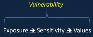 FSFedUSGoogle110313vulnerabilityandvalues