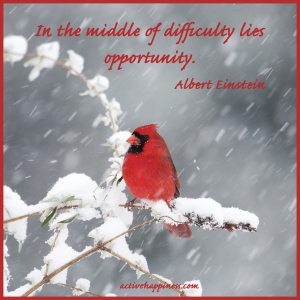in-the-middle-of-difficulty-lies-opportunityAEinsteinGOOGLE012414