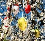 thPZBEH363 Easter Tree Egg BING 032416